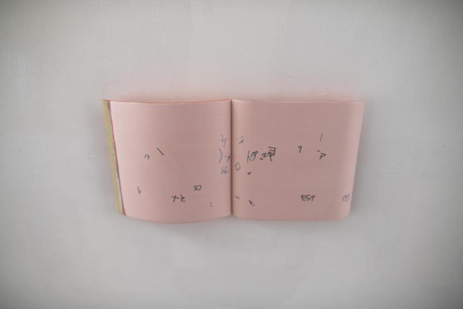 037 DSC06220 Hiroshi Tanigawa